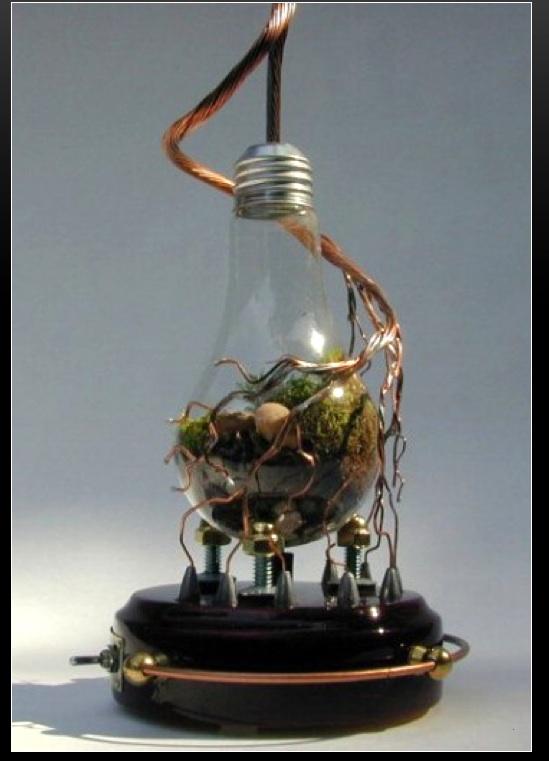 lampadina a fluorescenza : Fuorilegge le vecchie lampadine da 60 watt ? Il blog di Roberto ...